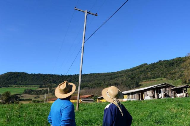 Limitações na rede elétrica travam modernização de metade das pequenas e médias propriedades no RS Diogo Zanatta/Especial