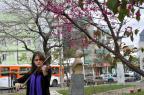 VÍDEO: Músicos tocam em locais públicos de Santa Maria e Vale Vêneto para promover Festival de Inverno da UFSM Germano Rorato/Agencia RBS