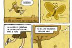 Cartunista gaúcho Rafael Corrêa conta em quadrinhos como convive com a esclerose múltipla (Rafael Corrêa/Memórias de um Esclerosado)