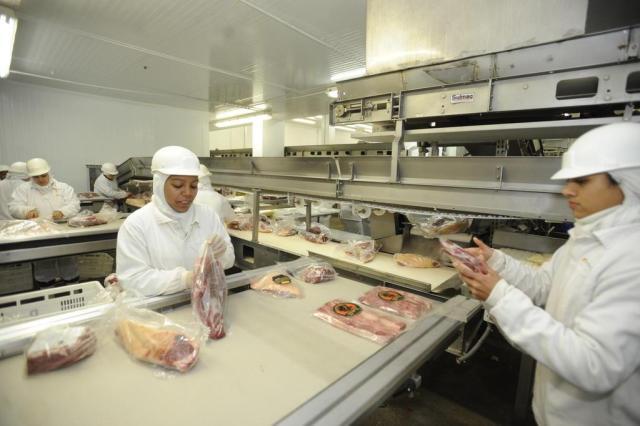 Gisele Loeblein: Indústrias de carne pressionam contra proposta que reduz percentual de crédito presumido Claudio Vaz/Agencia RBS
