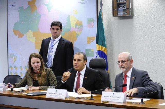 Relatora da CPI do Carf propõe indiciamento de 28 pessoas Edilson Rodrigues/Agência Senado/Divulgação