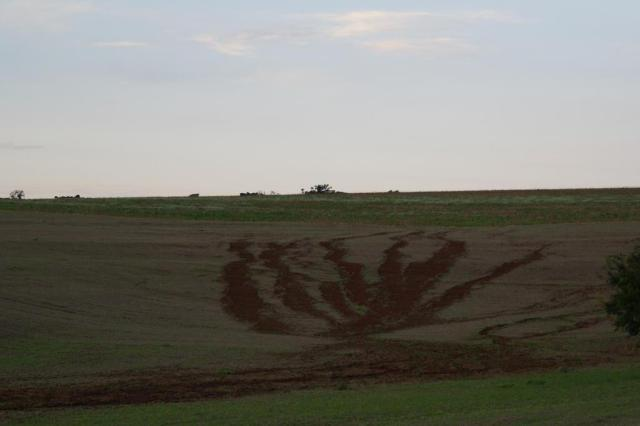 Com conservação do solo, meta é reduzir perdas em 20% até 2020  Edemar Streck/Arquivo pessoal