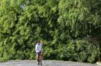 Prefeitura e CEEE pedem que moradores da Capital não removam árvores e galhos por conta própria Júlio Cordeiro/Agencia RBS