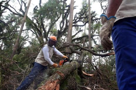 Mais de 4,2 mil toneladas de entulho foram recolhidas na Capital (Tadeu Vilani/Agencia RBS)