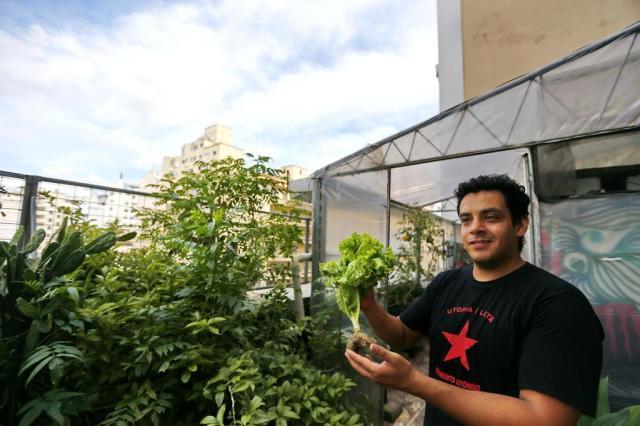 Agricultura ganha espaço em centros urbanos no Rio Grande do Sul Félix Zucco/Agencia RBS