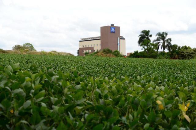 Safra cheia para hotéis na carona do agronegócio Diogo Zanatta/Especial