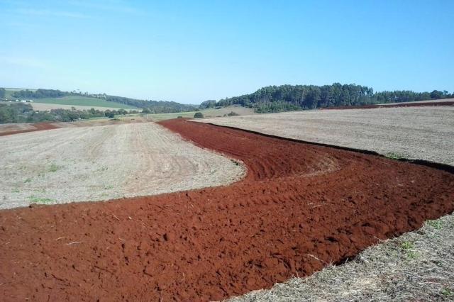 Paraná e Rio Grande do Sul têm quase a mesma área plantada de soja, mas produtividade dos vizinhos é 10,2% maior Emater-PR/Divulgação