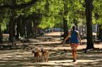 Falta do hábito de se exercitar virou epidemia no Brasil Carlos Macedo/Agencia RBS