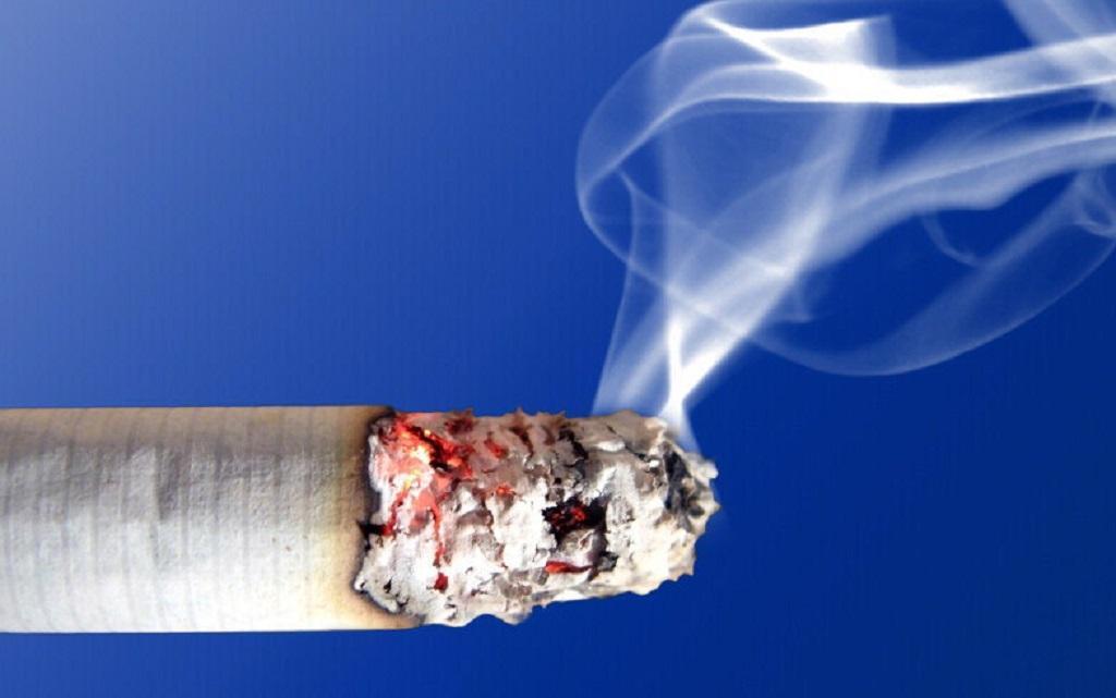 Se há cura da fumagem