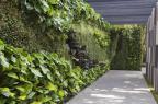 Alex Hanazaki e seu jardim arquitetado na Casa Cor SP (Yuri Seródio/Divulgação)