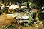 FOTO: carro invade o Parcão e colide contra árvore durante a madrugada (Ronaldo Bernardi/Agência RBS)