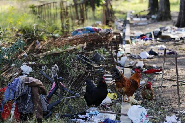 Interrompida em 2014, obra da Sala Sinfônica da Ospa tornou-se depósito de lixo Mateus Bruxel/Agencia RBS