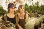 Mostra exibe em Porto Alegre sete filmes italianos inéditos imovision/Divulgação