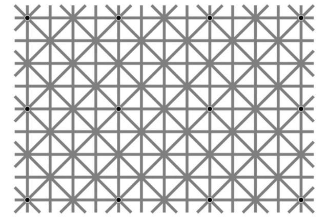 Ilusão de ótica viraliza na internet. Quantos pontos pretos você vê na imagem ao mesmo tempo? Facebook / Reprodução/Reprodução
