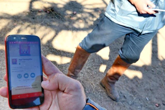 App Farroupilha traz dicas e serviço para visitantes do Acampamento Lauro Alves/Agencia RBS