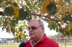 Vitorio Piffero deve seguir internado até o fim da semana que vem André Silva / Agência RBS/Agência RBS
