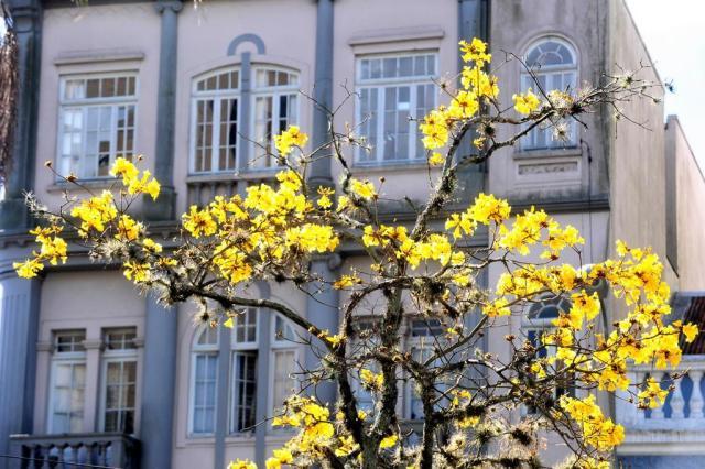 Confira como será o primeiro dia de primavera em Caxias do Sul Roni Rigon/Agencia RBS