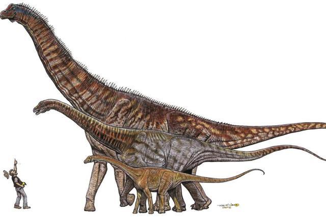 Pesquisadores anunciam descoberta do maior dinossauro brasileiro divulgação/divulgação
