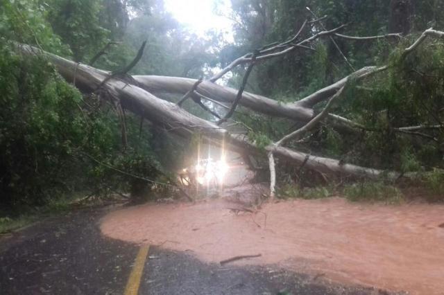 Oito rodovias registram pontos de bloqueio no RS devido a chuva Divulgação/PRF