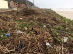 Após ressaca, mutirão é convocado para limpar praias de Torres Alexis Sanson / Divulgação - Projeto Praia Limpa Torres/Divulgação - Projeto Praia Limpa Torres