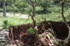 Cratera está engolindo terreno de idosa em Viamão Leitor DG/Arquivo pessoal