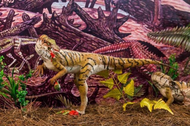 Fósseis descobertos no RS chamam atenção pelo estado de conservação Omar Freitas/Agencia RBS
