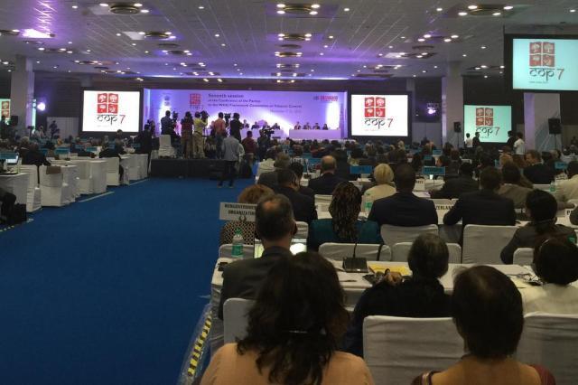 COP7 recomenda que governos incentivem produtores de tabaco a buscar diversificação na lavoura Joana Colussi/Agencia RBS