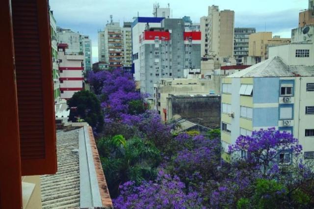 Leitores postam dezenas de fotos da Capital verde e florida na primavera @marcilioli/Instagram