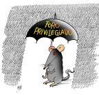 Iotti: privilegiados Iotti/Agencia RBS