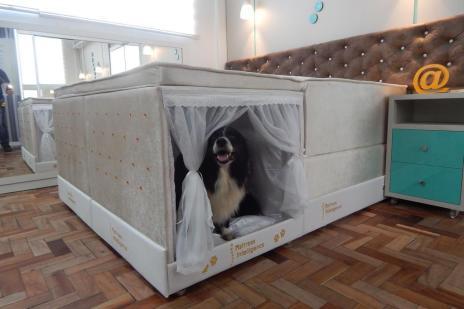 Lançamentos da semana: colchão com cama para pets embutida e hortinha vertical em feltro (Colchão Inteligente/Divulgação)