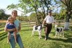 Neorurais no RS: jovens têm optado por trabalhar e morar no campo Camila Domingues/Especial