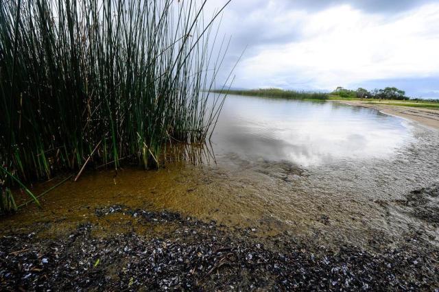 Fepam investiga descarte de esgoto em lagoa que abastece Capão da Canoa Anderson Fetter/Agencia RBS