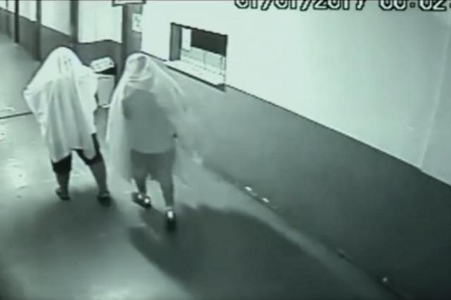 Vestidos de fantasmas, ex-secretários furtam impressora de prefeitura em Goiás Reprodução/TV Anhanguera