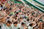 Saiba onde comprar os ingressos para o amistoso entre Chapecoense e Palmeiras Rodrigo Philipps/Agencia RBS