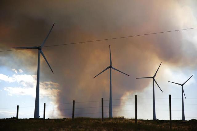 Bombeiros controlam incêndio em área florestal de Cidreira Isadora Neumann/Agencia RBS