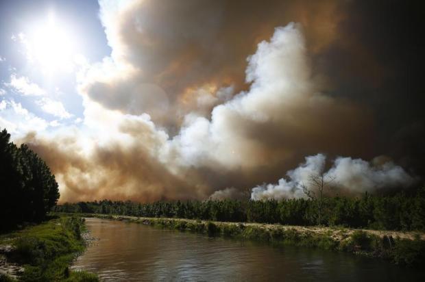 Fogo volta a atingir área florestal e bombeiros chamam reforços em Cidreira, no Litoral Norte Isadora Neumann / Agência RBS/Agência RBS