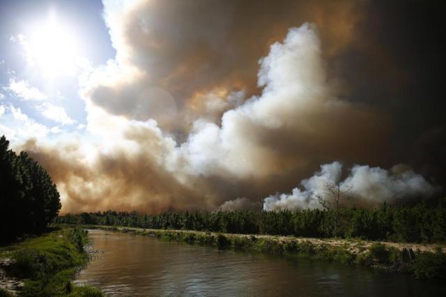 Fepam cobra providências de empresa dona da área incendiada em Cidreira Isadora Neumann/Agencia RBS