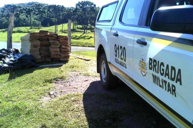 Patram encontra serraria móvel no interior de Caxias do Sul Patrulha Ambiental/Divulgação