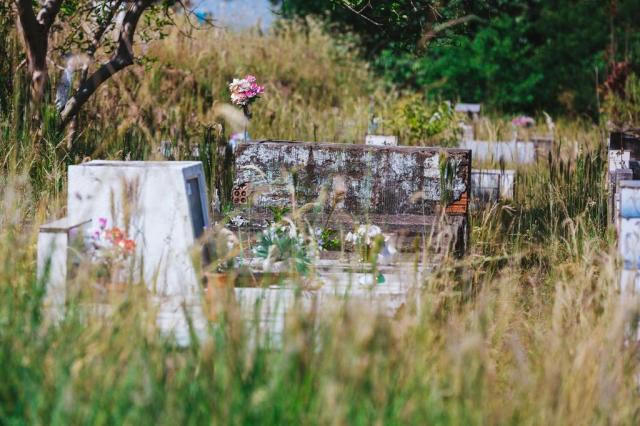 Furtos, acúmulo de lixo, matagal e até um cavalo: cemitério municipal de Sapucaia do Sul está abandonado Omar Freitas/Agencia RBS