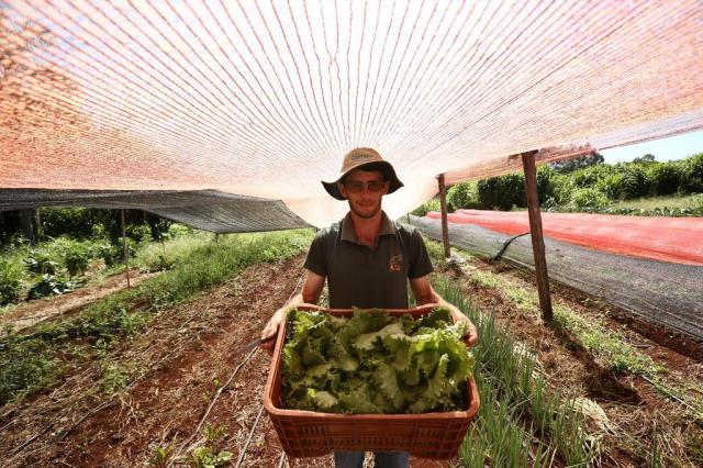 Conheça o jovem agricultor que cultiva as redes sociais Carlos Macedo/Agencia RBS