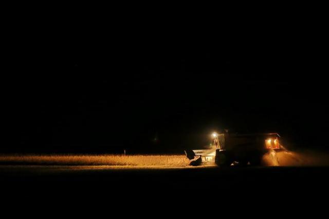 Colheita da soja é feita até de noite Fernando Gomes/Agencia RBS