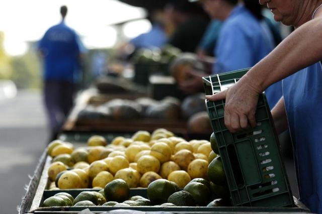 Prefeitura estuda alterar local de feira de agricultores no centro de Caxias Juan Barbosa/Agencia RBS