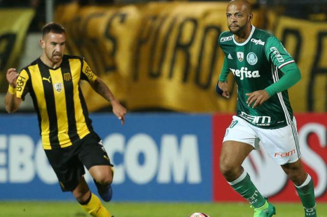 Conmebol pune o Palmeiras com três jogos sem torcida como visitante Palmeiras / Divulgação/Divulgação