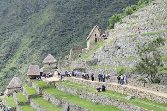 Novos turnos para acesso de turistas à cidadela de Machu Picchu Rosane Tremea / Arquivo pessoal/Arquivo pessoal