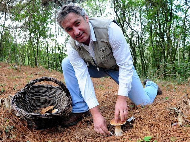 Caça aos cogumelos selvagens nos Campos de Cima da Serra Fernando Gomes / Banco de Dados/Banco de Dados