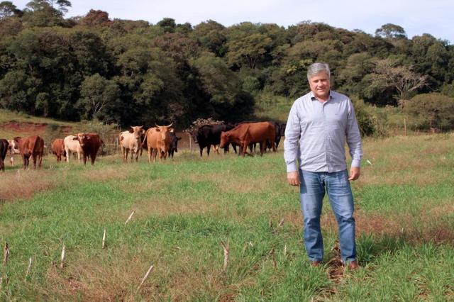 Preço baixo do trigo faz área plantada cair pelo terceiro ano consecutivo no RS Elisangela Porto/Especial