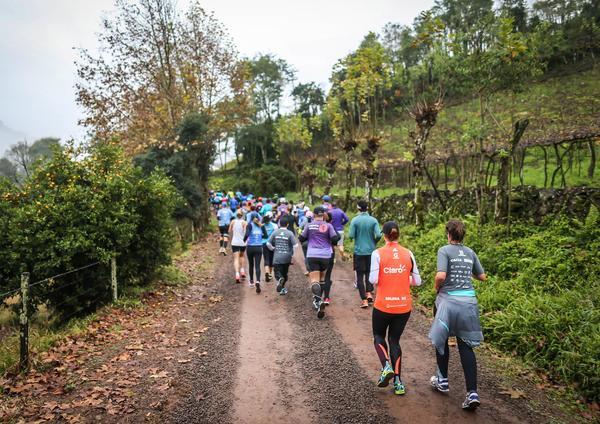 Vale dos Vinhedos terá meia maratona do vinho no próximo sábado, em Bento Gonçalves (Caixa Wine Run / Divulgação/Divulgação)