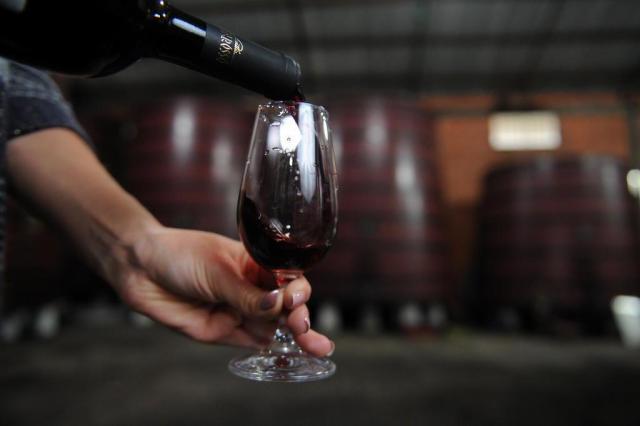 Dia do Vinho reúne programação com mais de 200 atividades na Serra e em outras regiões do país Felipe Nyland/Agencia RBS
