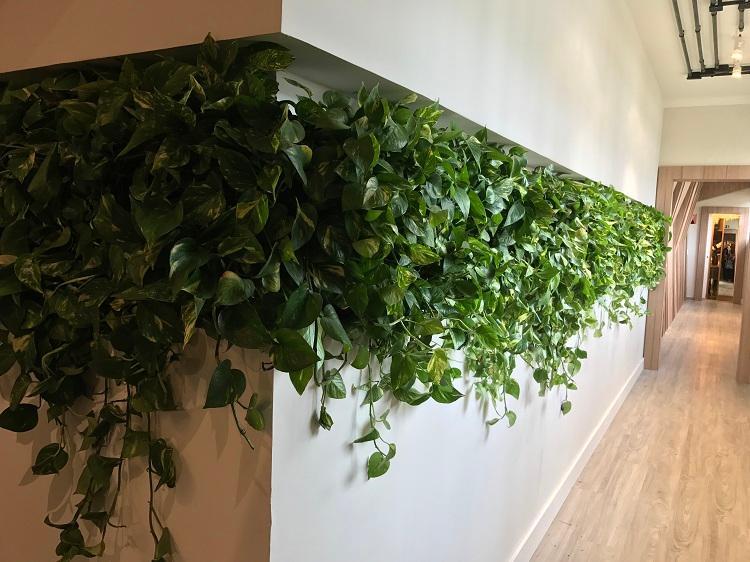 Natureza dá o tom na Casa Cor Paraná dentro ou fora de casa Eleone Prestes / Studio Prestes/Studio Prestes