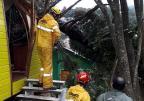 Gramado tem estradas bloqueadas e casas destelhadas em decorrência do temporal Prefeitura de Gramado / divulgação/divulgação